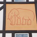 13.elefantul iluzoriu